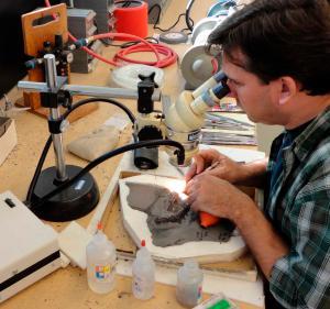 fish fossil preparation