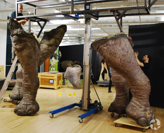 Two men install the legs of a life-sized model of Indricotherium.