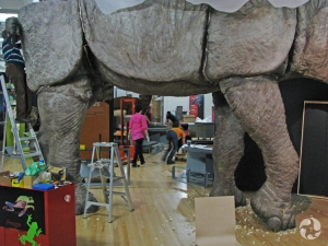 View of the exhibition being installed, with the Indricotherium model partially visible in the foreground.