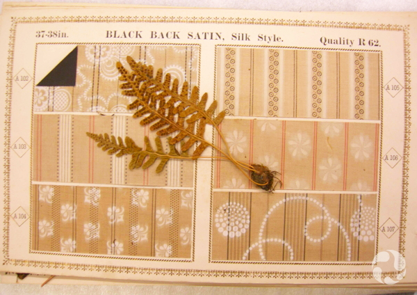 A plant specimen on a sheet of six fabric samples.