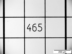Gridlines on a piece of glass with the number 465 in the centre square and a reference of 200 µm for scale.