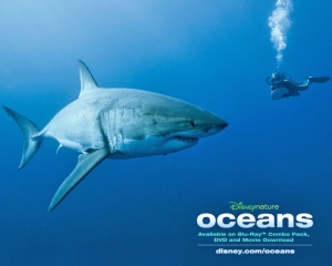 An image from Oceans.