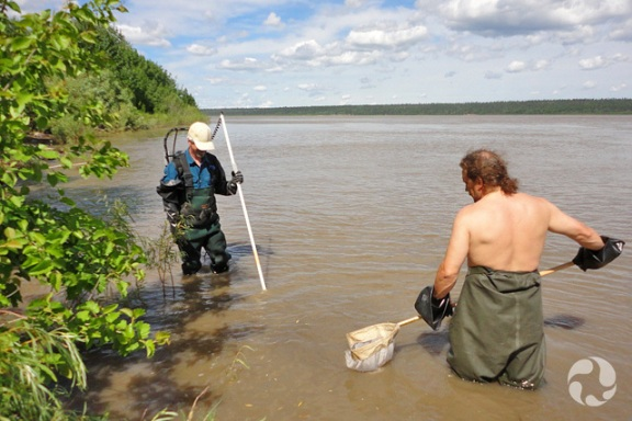 Two men holding nets and fishing as they stand in river.