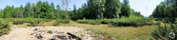 View of meadow with sandy area in front.