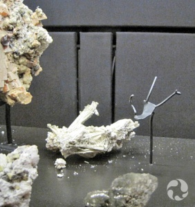 A mineral fallen off its mount in the display case.