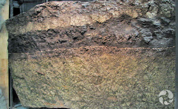 The sedimentary rock wall in the gallery.