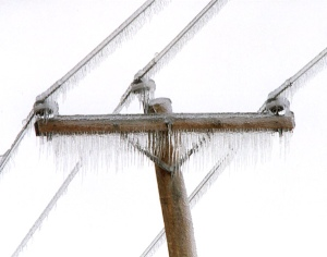 Top of a utility pole coated with ice.