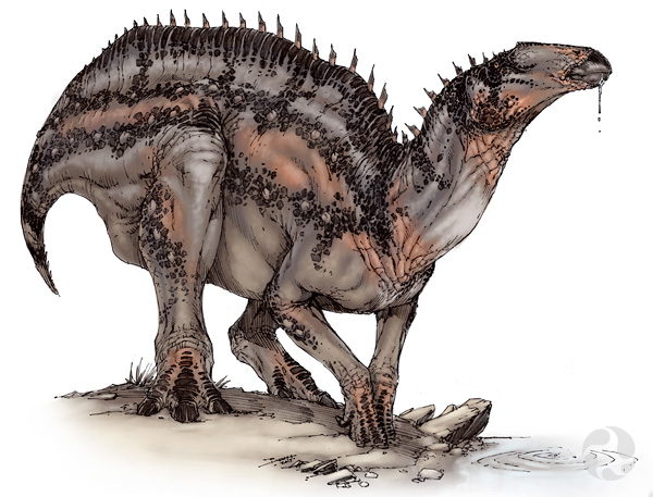 Illustration of an Edmontosaurus regalis dinosaur.