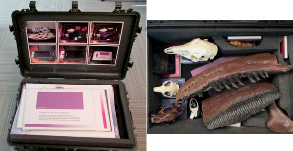 Collage: The case with the lid open showing the 2D materials, and an overhead view of the padded interior showing the 3D materials.