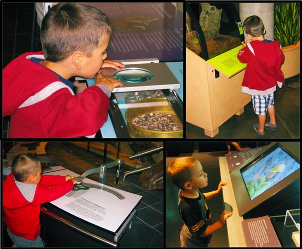 Photos of children in various galleries.