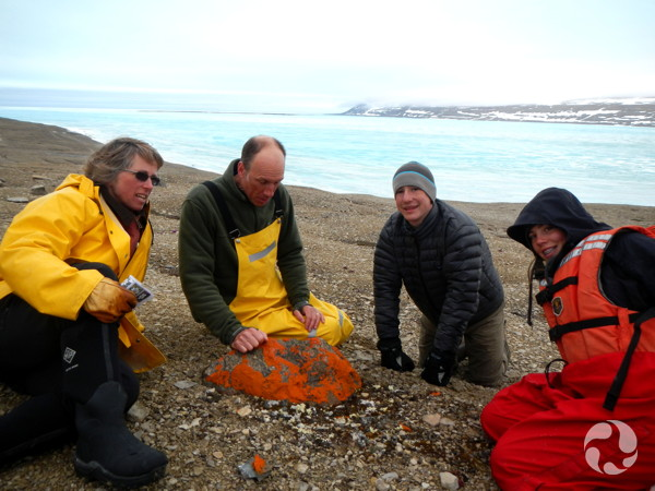 Four people on a rocky beach examine a lichen-encusted rock.