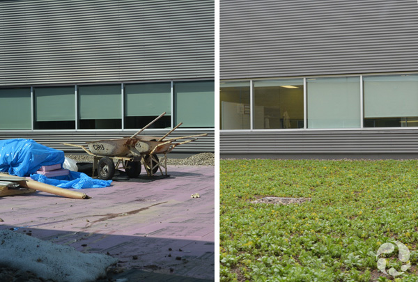 One photo showing an area of roof with stones and other material used in preparing for the green roof, and another photo showing the plants and soil of the green roof, with a perimeter of stones.