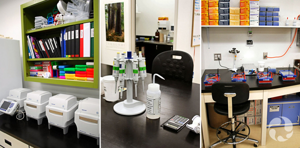 Three photos of lab equipment on countertops.
