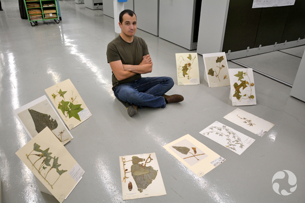 A man sits on the floor, surrounded by herbarium sheets.