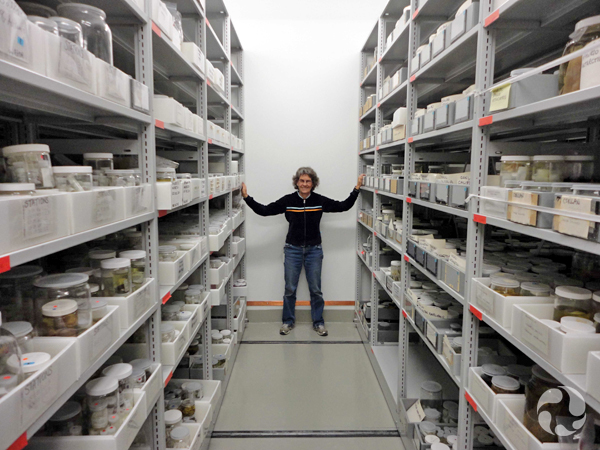 A woman stands between rows of shelves that hold jars.