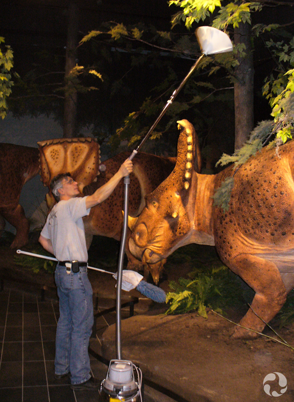 Near full-sized models of Vagaceratops irvinensis dinosaurs, a man wields a vacuum overhead, aiming the cone attached to the end at fake leaves.