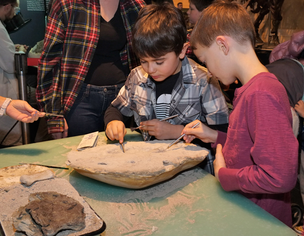 Two boys use fine hand tools to remove rock from around a fossil.