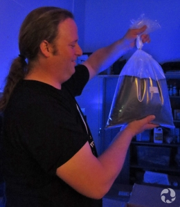 A man holds a bag of fish in water.