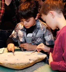 Two boys carefully dusting a fossil with paintbrushes.