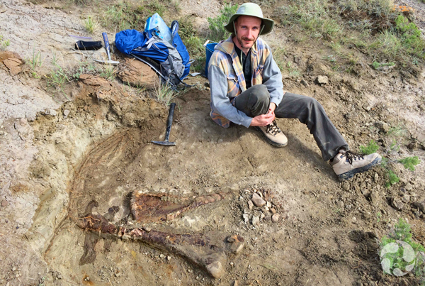 Scott Rufolo sits beside a partially excavated leg of a horned dinosaur.
