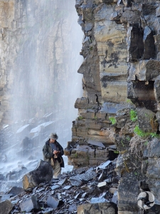 A man at base of waterfall collects mosses.