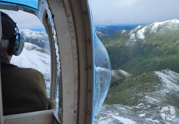 View of mountains from inside a helicopter.