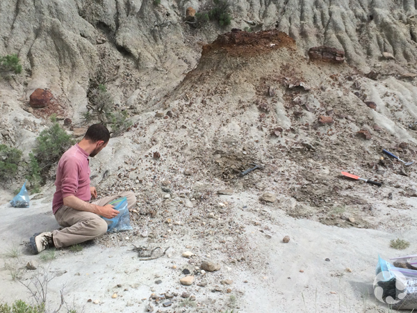 Scott Rufalo collects samples at a fossil site while sitting on ground.