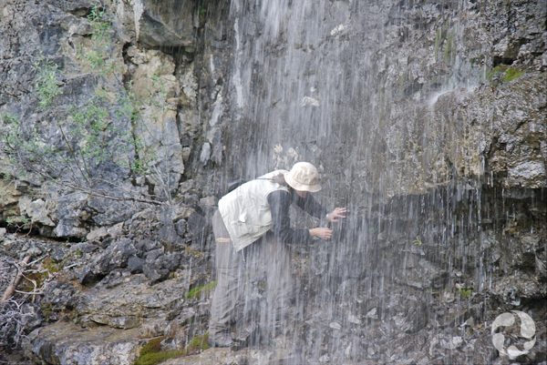 Jennifer Doubt looking for mosses behind a waterfall.