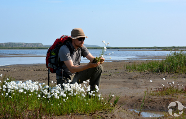 A museum botanist kneels beside the Coppermine River while holding plants collected
