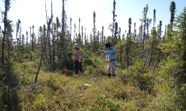 Two scientists put metal stakes in ground at a sampling site.