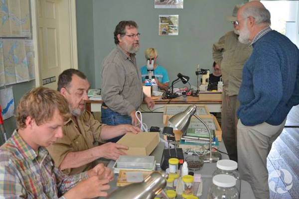 People sitting at tables examine specimens while others are standing and talking.