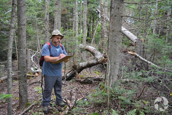 Kamal Khidas takes notes while standing in a forest.