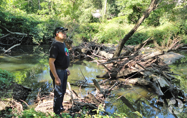 A man stand beside a logjam along the Saw Mill River.