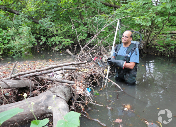 A man in hipwaders stands by another logjam in Tibbetts Brook.