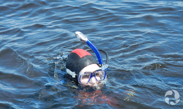A scuba diver's head emerges from the water.