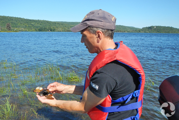 A man who is seated in a boat examines mussels he holds in his hands.