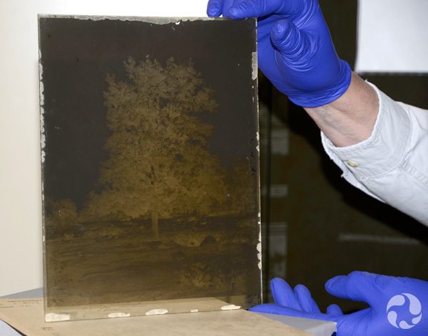 Hands hold up a glass-plate negative.