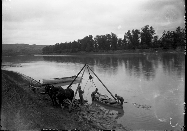 A black-and-white photo showing three men along a riverbank, loading cargo into a canoe with the help of a tripod, pulley and horses.