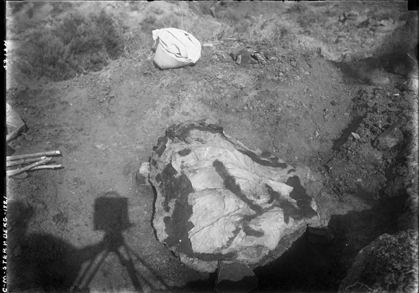 A black-and-white photo of a plaster field jacket on the ground.