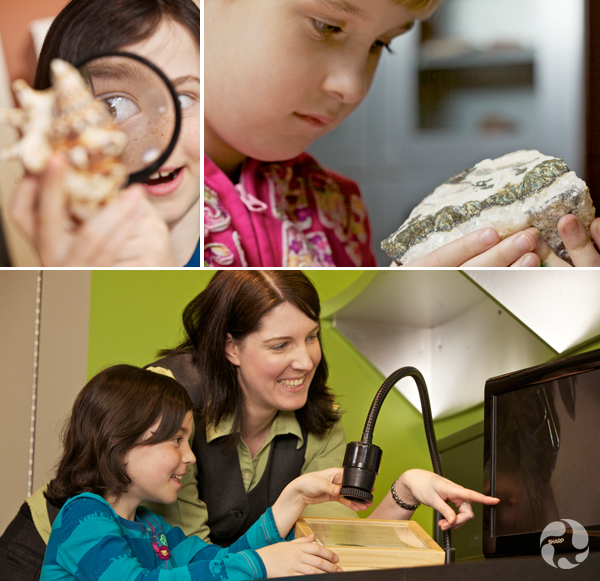 Collage: A child looks at a rock, a child looks at a shell through a magnifying glass, a museum educator and a child use a microscope that is hooked up to a monitor.
