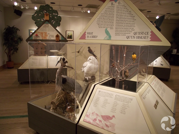 An exhibit module in the exhibition.