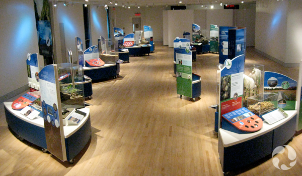 The exhibition set up in a gallery.