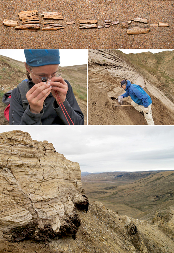 Collage: The fossil bone fragments of the High Arctic camel, laid out on sand, Natalia Rybczynski holding a small fossil bone in one hand and examining it using a small magnifying glass, a man standing on a sandy slope and digging a hole to collect samples, and a rocky outcrop with hills in the background.