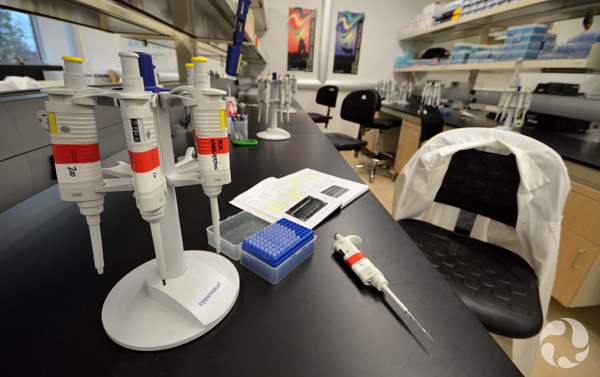 Pipettes and other instruments on a work surface in the lab.