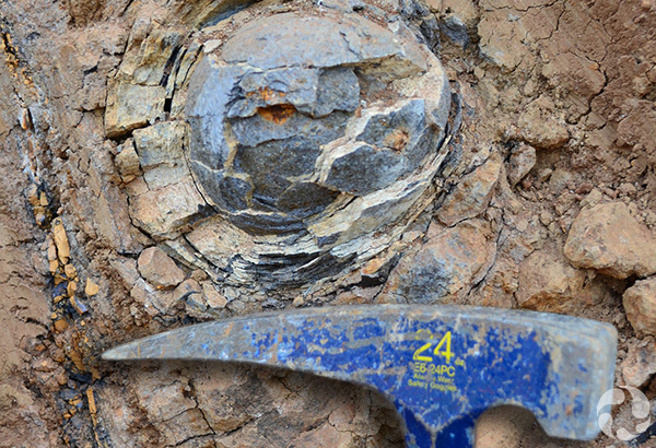Basalt forming a round shape in the ground beside a geologist's hammer.