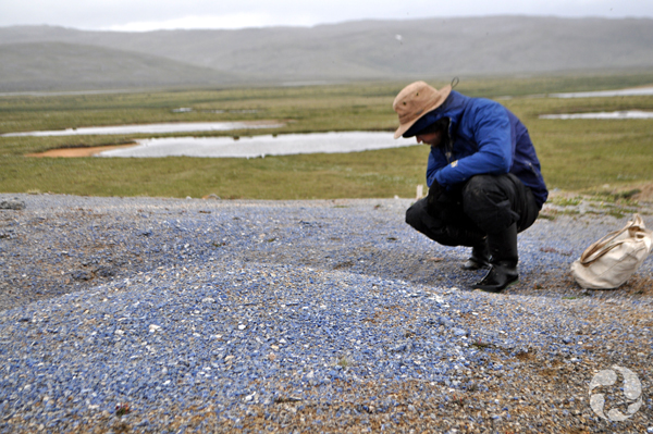 A man squats to look at blue stones on the ground.