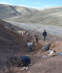View of the Tiktaalik excavation site on Ellesmere Island.