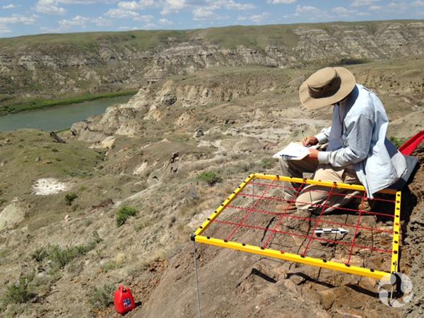Jordan Mallon seated on ground as he maps the bonebed.
