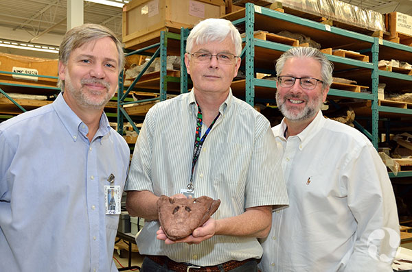 Kieran Shepherd holds the fossil skull of Tiktaalik, flanked by scientists Ted Daeschler (left) and Neil Shubin.
