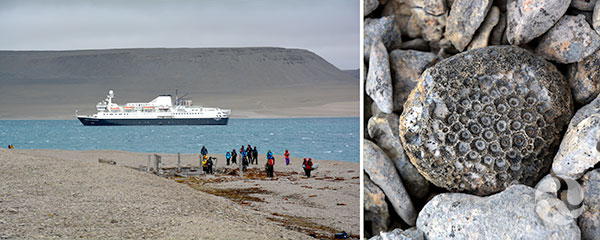 Collage: People stand on shore, a ship in the background. A rock with fossils.